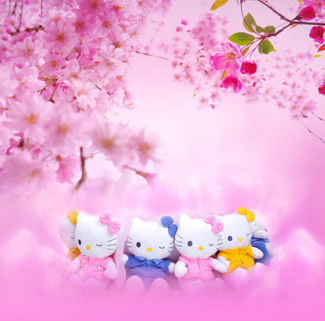 Unduh 620+ Background Foto Hello Kitty Gratis Terbaik