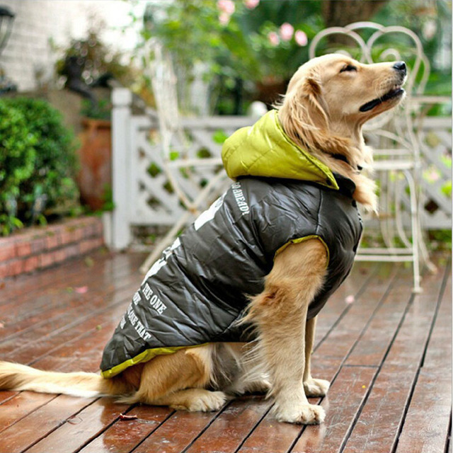 Large Hooded Rain Coat