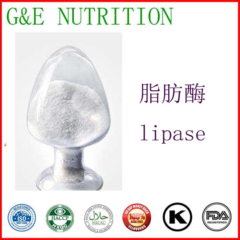 Factory supply high purity 99% healthy lipase 99% Free shipping full specialized dye ink ciss for eposn t1711 t1701 for epson xp 313 xp 413 xp 103 xp 203 xp 207 xp 303 xp 306 xp 403 xp 406