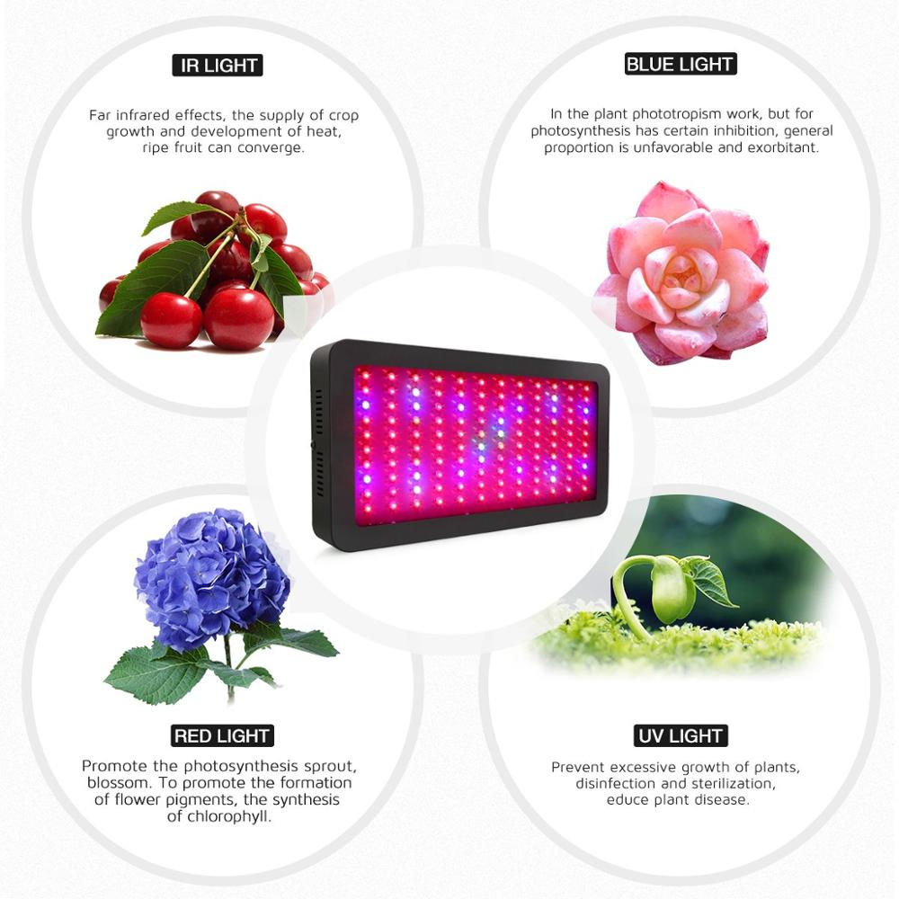 1200w grow light (2)