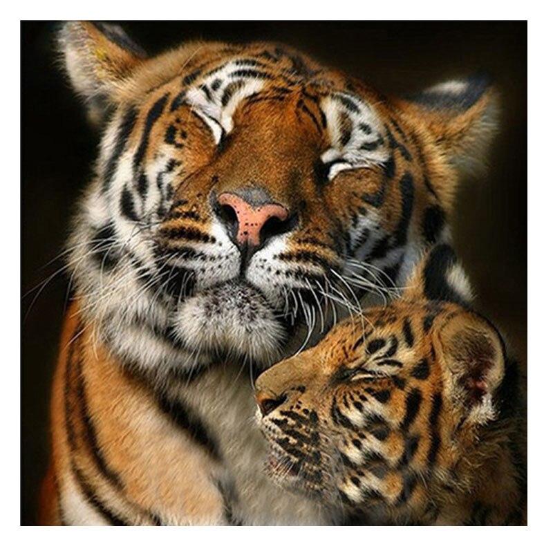 Картинки львов и тигров с надписями, подписать открытку цветами