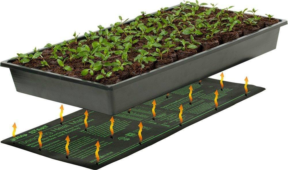 grass hill blankets mats seed watch a starter youtube mat germination on using to grow