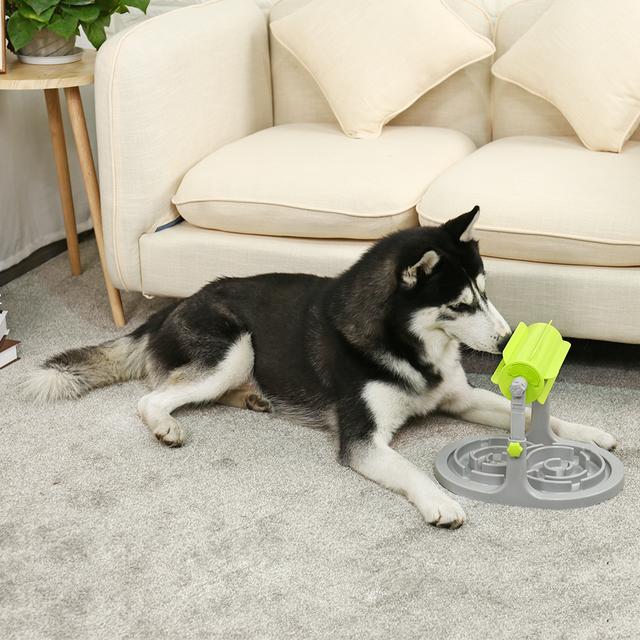 Dog's Creative Slow Feeder