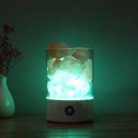 Natural LED Light Himalayan Salt Lamp Air Purifier USB Crystal Light Mood Creator Indoor Home Bedroom Lava Lamp Warm Table Lamp