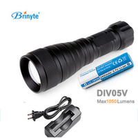 Brinyte DIV05V LED Video Light CREE XML2 1000lm LED Scuba Dive Torch Diving Flashlight 200M Underwater Lamp + battery +charger