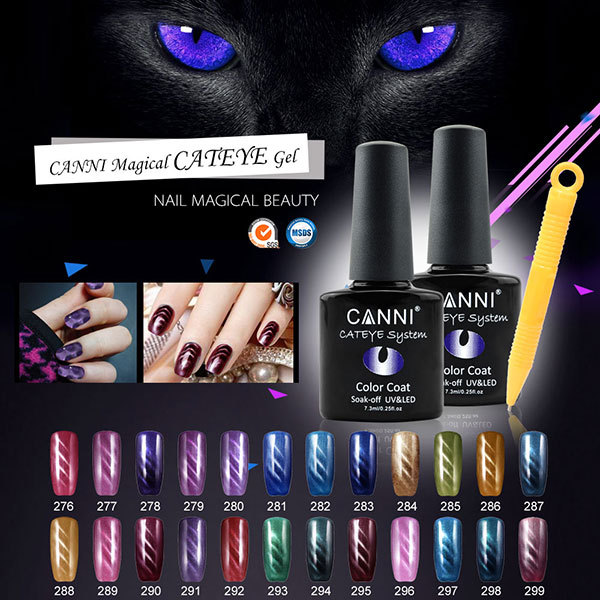 Nail Art CANNI 24 Color Cat Eyes Gel Polish Magnetic LED UV Gel Varnish Lacquer Nail Tips DIY Deco