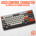 ASCII контрольный код персонажа sa профиль краситель Sub Keycap набор толстый PBT для gh60 xd60 xd84 cospad rs96 zz96 87 104 660