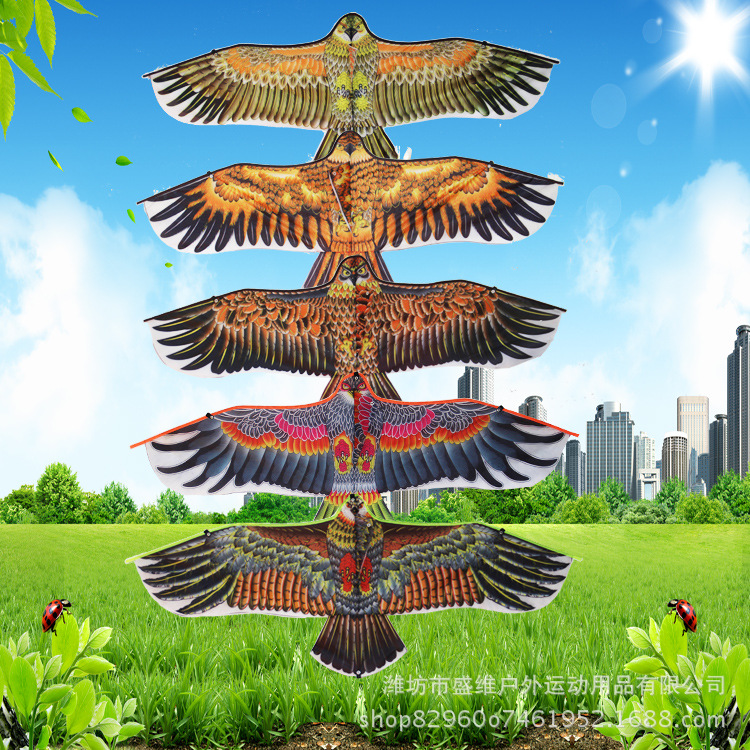 Children Outdoor Kite New Eagle Kite 110 Cm Plane Eagle Parent-child Interactive Toy.Random Delivery