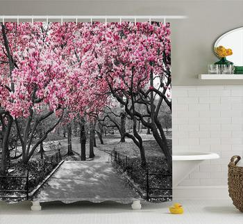 NYC Decor Collection Blossoms In Central Park Cherry Bloom Trees Forest Spring Springtime Landscape Picture