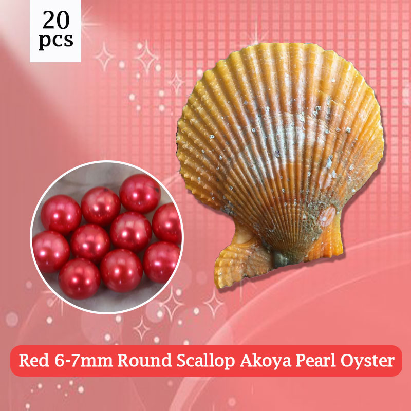 20pcs Round Scallop Akoya Oyster 6-7mm Red Pearl in Oyster Vacuum-Packed Free Shipping,popular oysters gifts PJW282 faux fur cuff pearl beading scallop dress