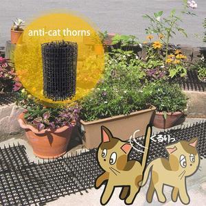 Image 3 - ירוק גינון פלסטיק אנטי חתול קוץ חתול כלב יתושים דוחה פלסטיק נייל