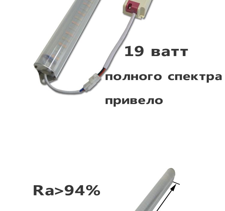 19W_02