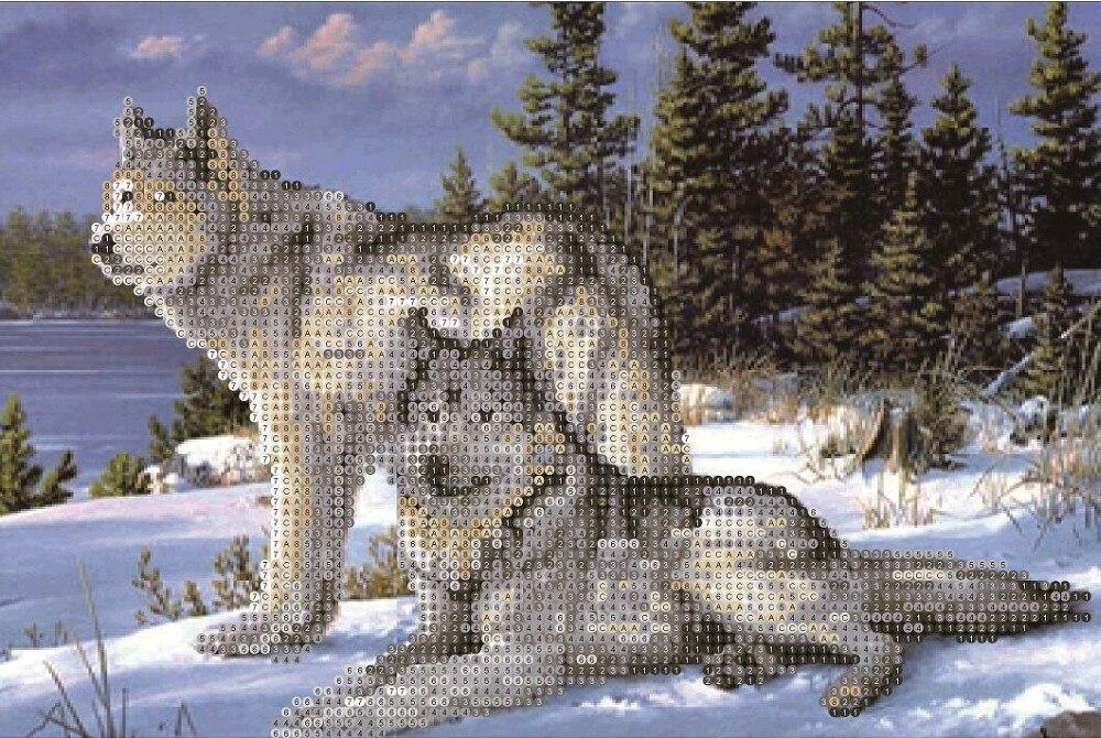 wolf front veiw