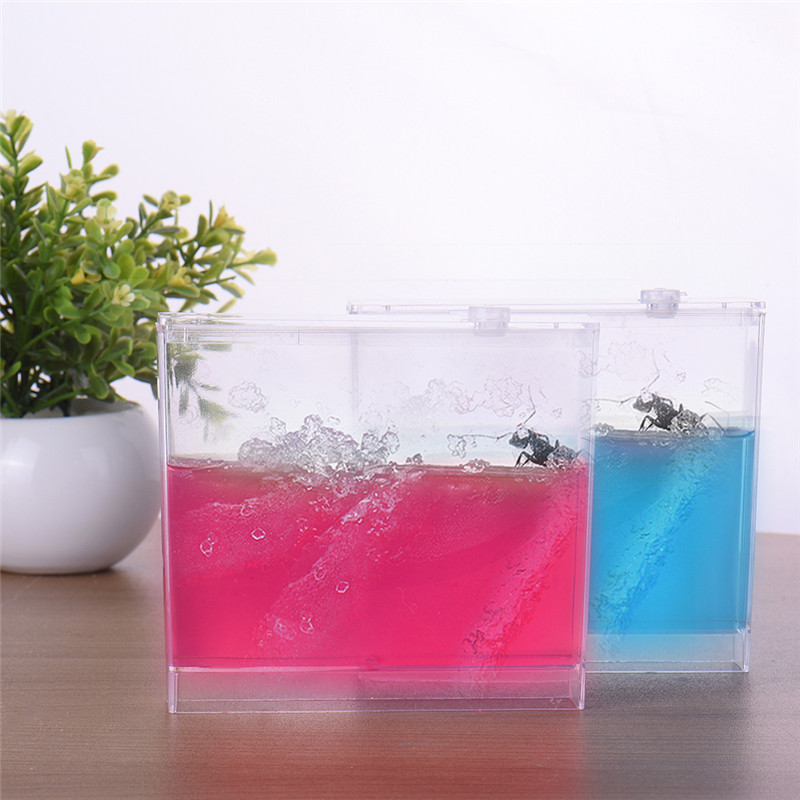New Design Natural Ant Home Farm Ecological Toys font b Science b font Educational Acrylic Ants