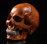1 Resin skull ornaments gift