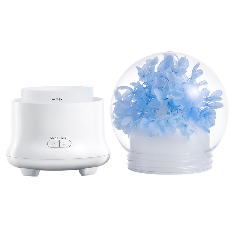 air humidifier (5)