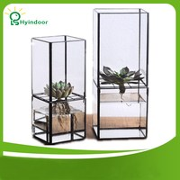 Flower Pots Rectangle Split Type Hydroponic Glass Terrarium Vase