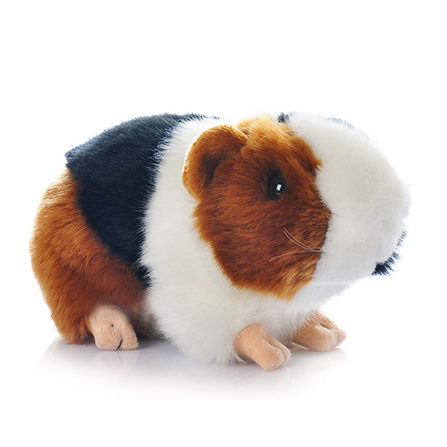 online get cheap guinea pig gifts aliexpress com alibaba group
