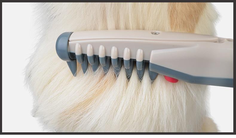 Peigne de toilettage électrique pour chien