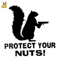 12.9CM*12.7CM Protect Your Nuts Squirrel Police Army Navy Marines Car Stickers And Decals Creative Sticker for jeep Honda Toyota