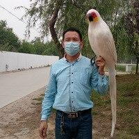 Большая новая модель белый макет попугая полиэтилен и меха попугай игрушка в подарок около 120 см 0458