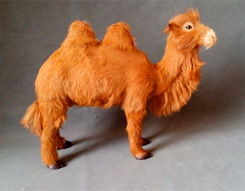 simulation two-humped camel 45x36cm model polyethylene&furs camel model home decoration props ,model gift d429simulation two-humped camel 45x36cm model polyethylene&furs camel model home decoration props ,model gift d429