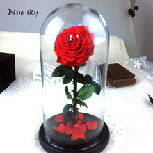 Blue Sky The Beautiful Glass Cover Fresh Preserved Rose Flower For Wedding Centerpieces Home Decorative Flowers