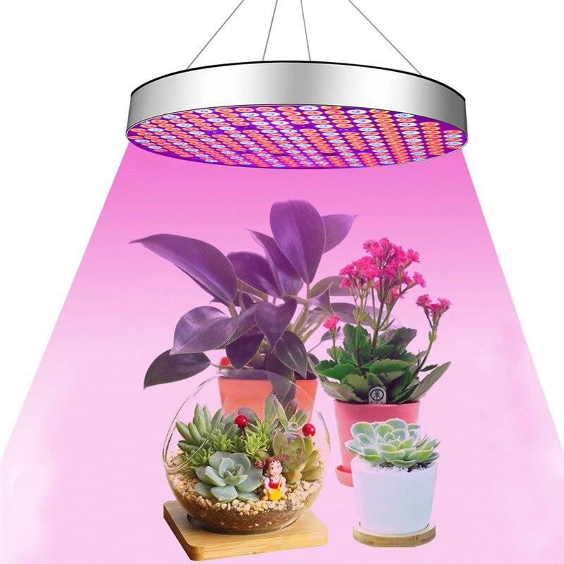 50 w LED Luci a intensità Full Spectrum Pianta Coltiva La Lampada di Figura Rotonda Appeso HA CONDOTTO LA Luce per le Piante d' Veg La Fase di Fioritura semi