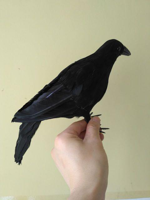 Halloween prop simulation black crow 30cm bird model,foam&feathers crow handicraft, garden decoration,gift d1010