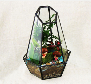 Cuarzo Forma Terrario Geometrico Vidrio Plantador Jardin Terrario - Terrario-para-plantas