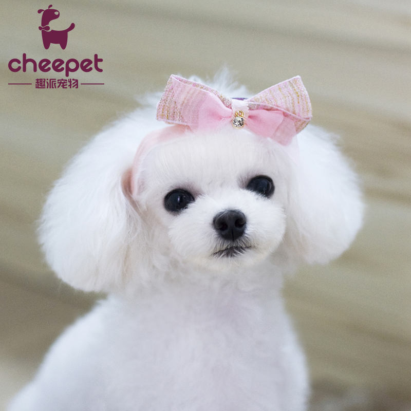 Hight Recommend Hand Made Pet Cat Dog Hair Accessories