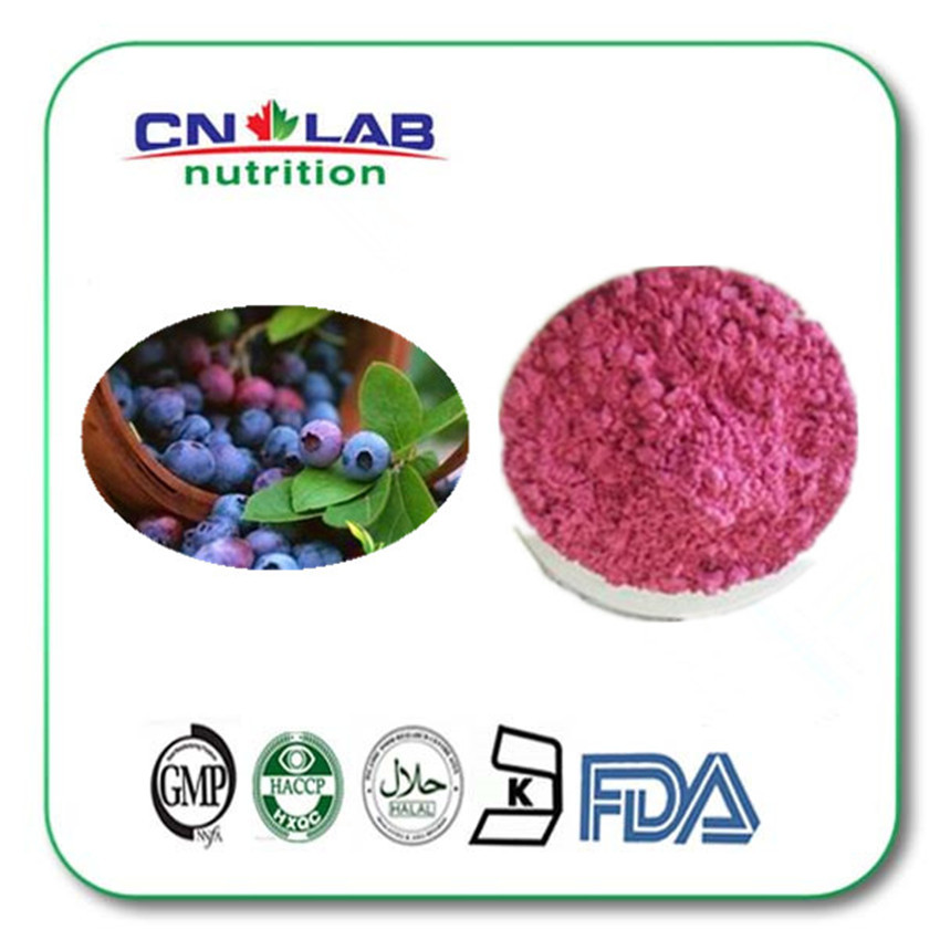 1kg Hot sell Black Currant Extract | Black Currant fruit Extract Black Currant Powder Extract ( 100% Pure Natural fruit extract)