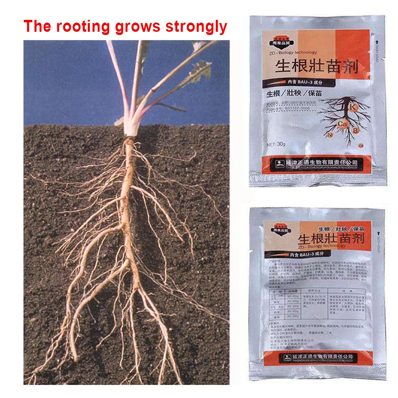 Fast-Rooting-Powder Fertilizer-Trees Rapid-Medicinal Plants Germination Strong For Cutting