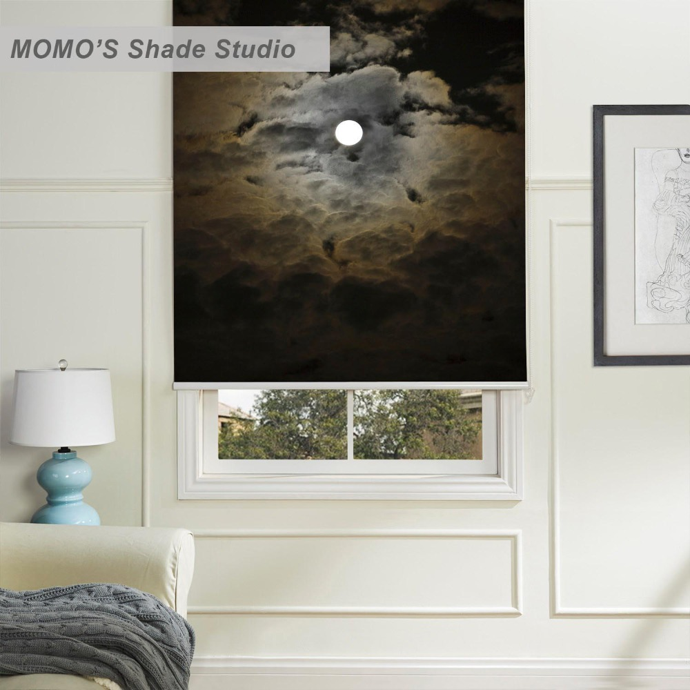 Painted Roller Shades : Momo roller blinds blackout design window painting