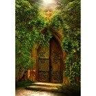 Old Arch Door Backdr...