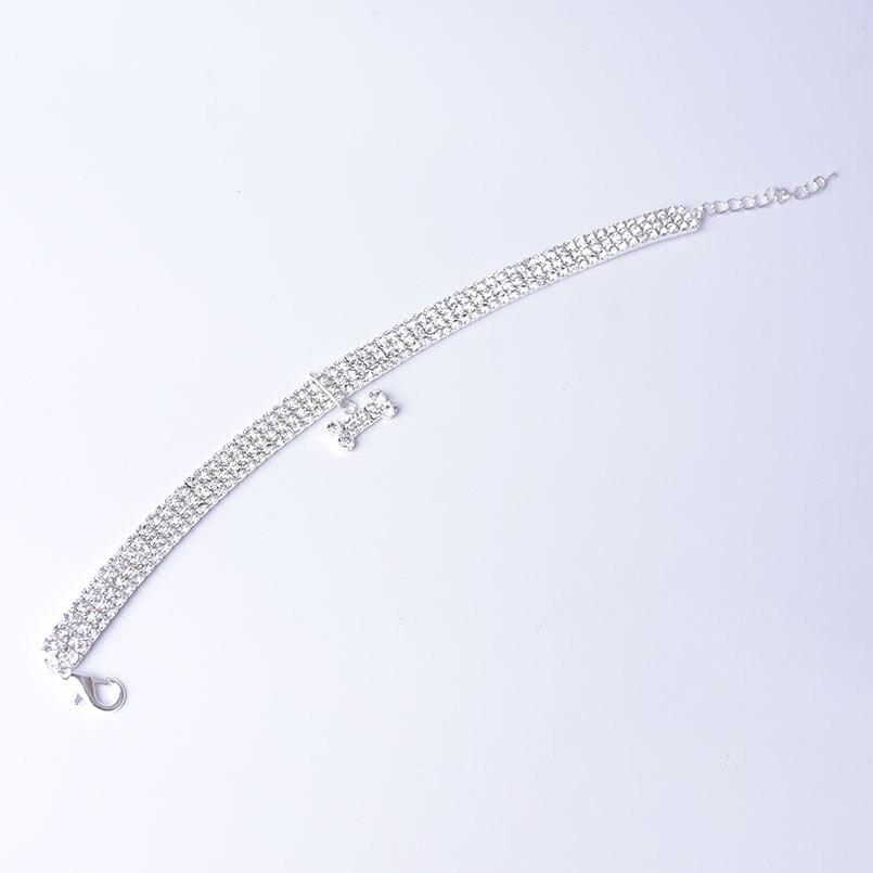 collier de diamant pour chien