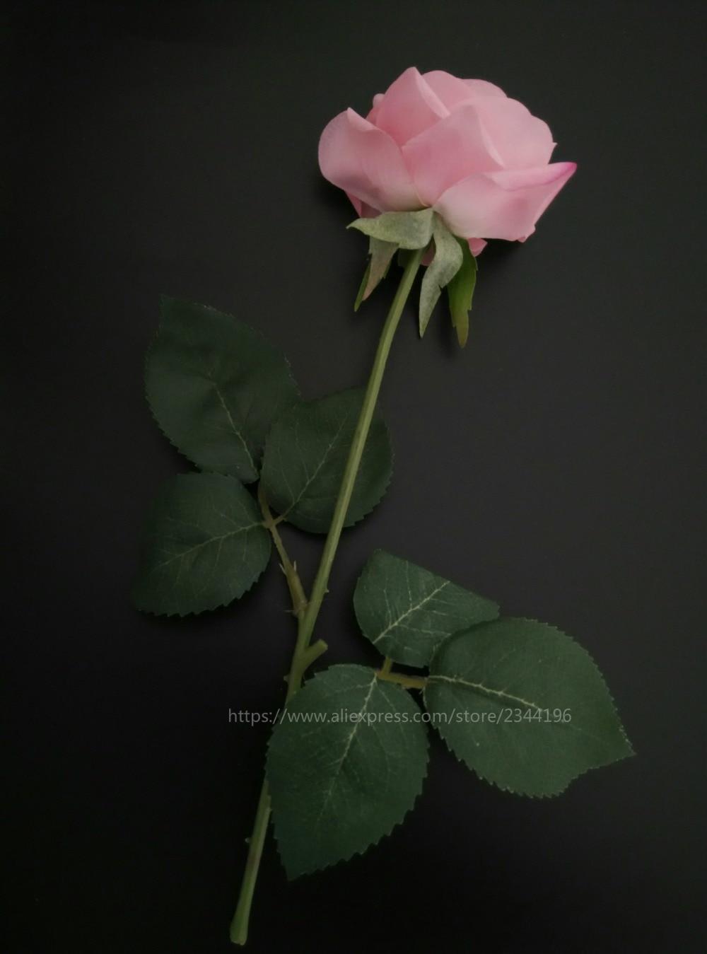Valentines Day Baby Pink Rose For Baby Girl Birthday Wedding