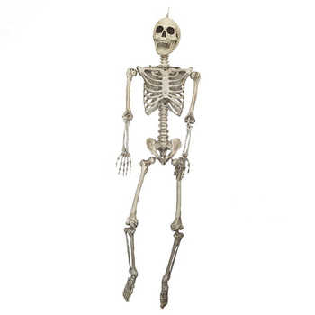 1.85 เมตร Jointed Skeleton ตกแต่ง Jointed ฮาโลวีนโครงกระดูกสำหรับ Party Haunt House Prank Spooky Props