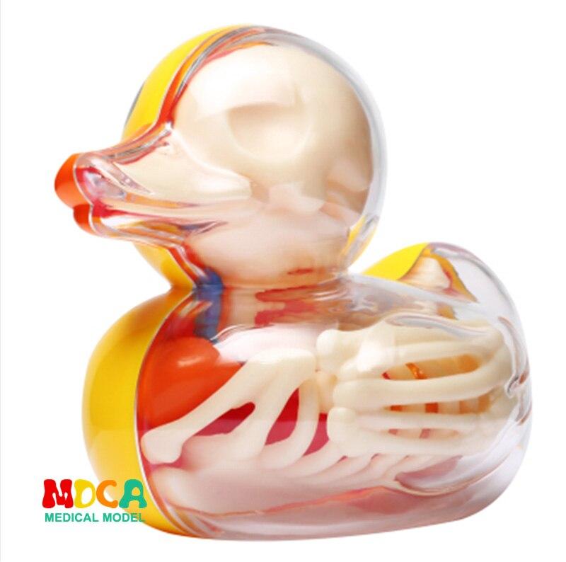 Маленькая желтая утка 4d мастер головоломка Сборка игрушки перспектива кости анатомия модель