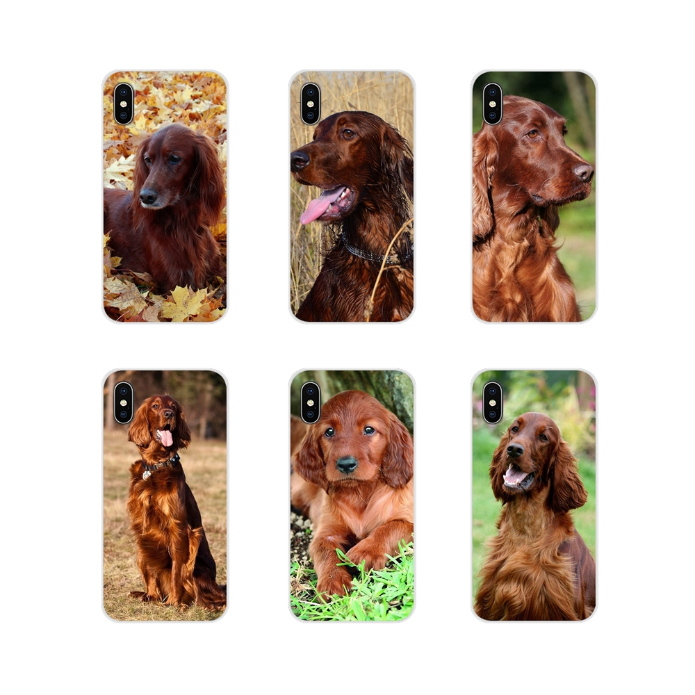 Irish Setter <font><b>dog</b></font> art For <font><b>Samsung</b></font> <font><b>Galaxy</b></font> <font><b>A3</b></font> A5 A7 A9 A8 Star A6 Plus 2018 2015 2016 <font><b>2017</b></font> Accessories <font><b>Phone</b></font> <font><b>Cases</b></font> Covers image