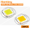 Wholesale 20pcs High Power LED Chip 100W Natural Warm Cold White 2700K-35000K Integration COB Spotlight Floodlight Outdoor Lamps