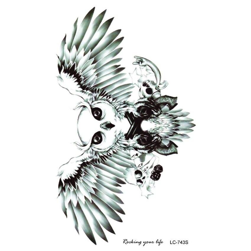830+  Gambar Burung Hantu Terbang HD Paling Keren Free