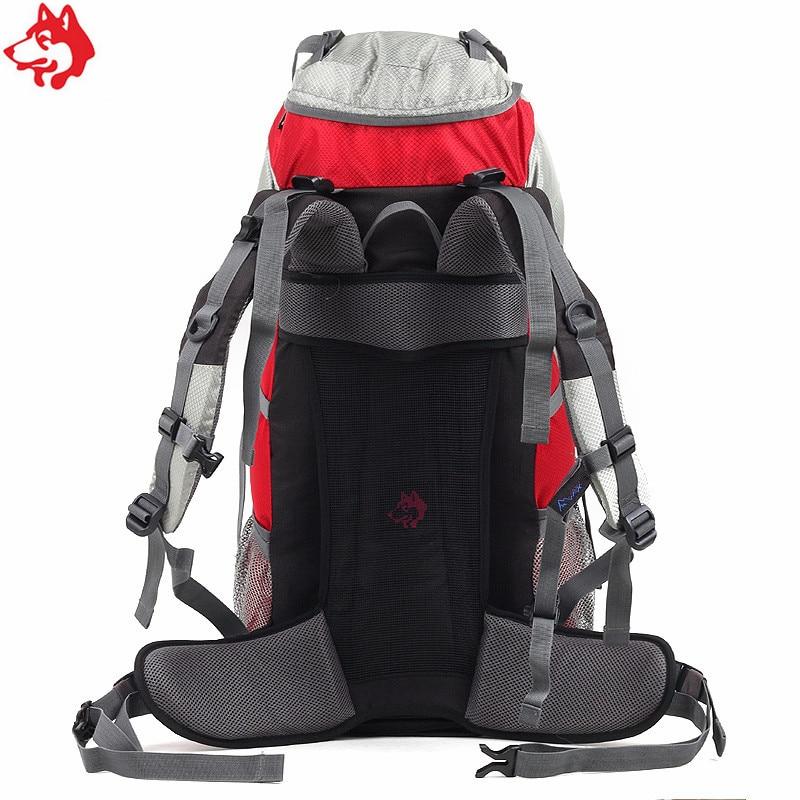 Купить с кэшбэком 50L Blue/Orange/Green/red men's hiking backpack with rain cover big capacity outdoor mountaineering climbing bag