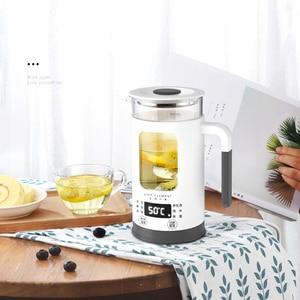 Image 3 - 600ML Mini Multi function Electric Kettle Health Preserving Pot Glass Boiled Tea Pot Hot Water bottle Warm Kettle 220V