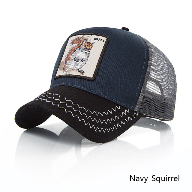 navy squirrel