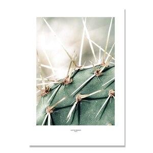 Image 5 - Kaktus obraz ścienny na płótnie do salonu nordycki plakat dekoracja zielona ściana roślin zdjęcia Unframed