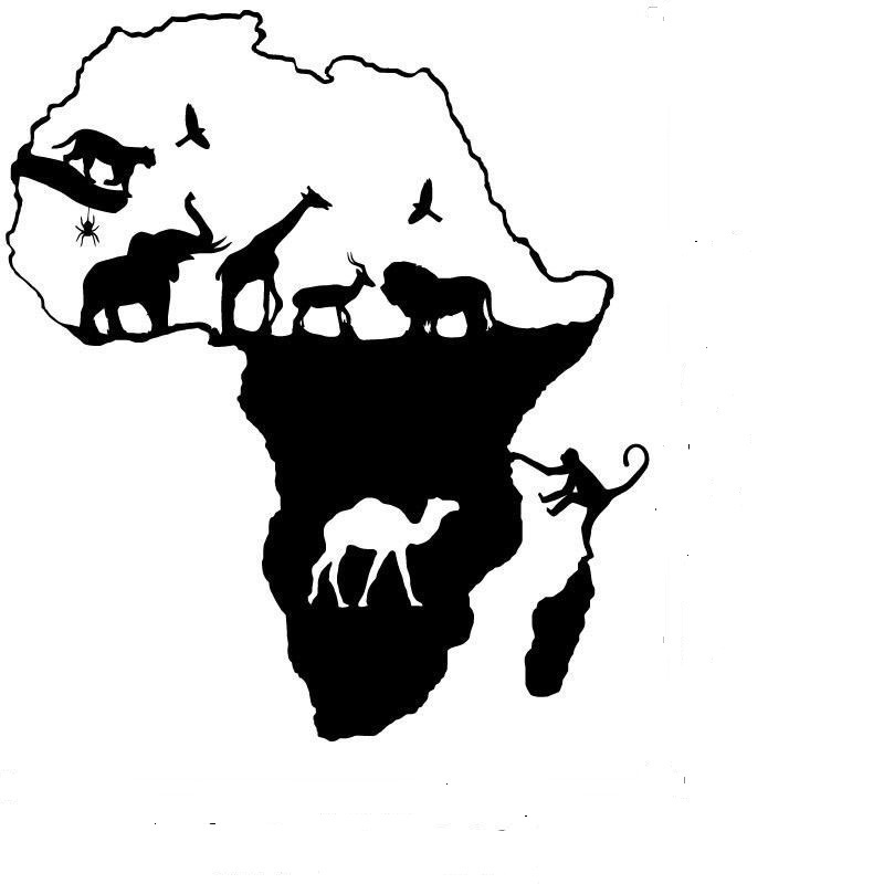 African Wall Stickers Wall Murals Ideas - Wall decals animalsafrican savannah wall sticker decoration great trees with