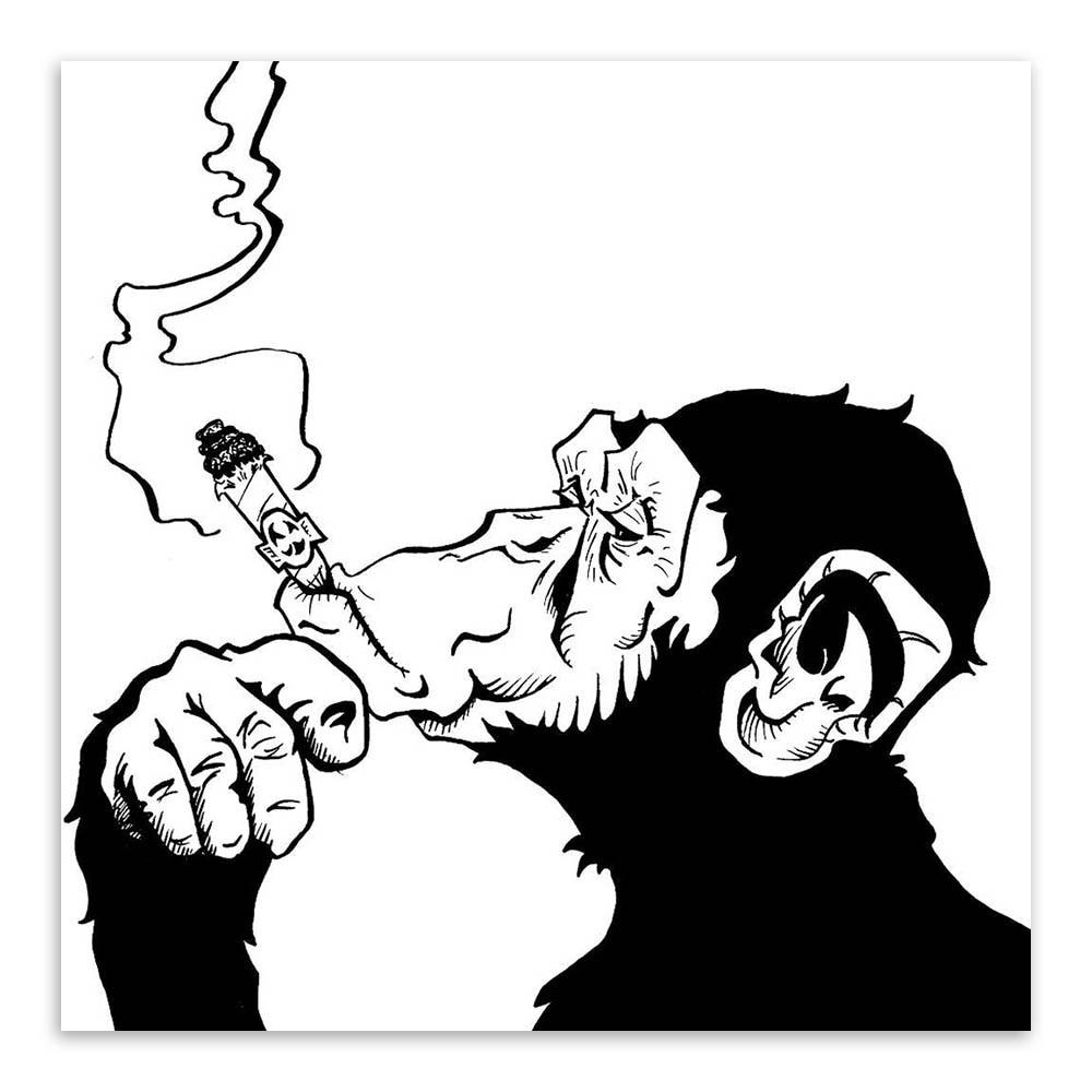 Nail Art Hitam Putih: Hitam Putih Minimalis Simpanse Poster Mencetak Antik Hewan