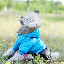 Waterproof Fabric Dog Coat for small Dogs