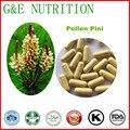 Venta caliente polen de pino/Polen Pini Cápsulas de polvo de 500 mg x 1000 unids